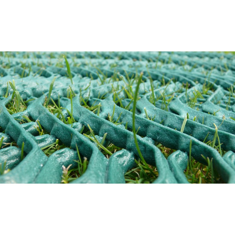 Grass Protection Mesh - PREMIUM