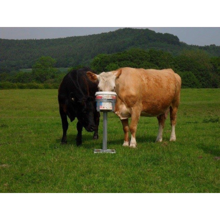 TB Buster - Mineral Lick Stand
