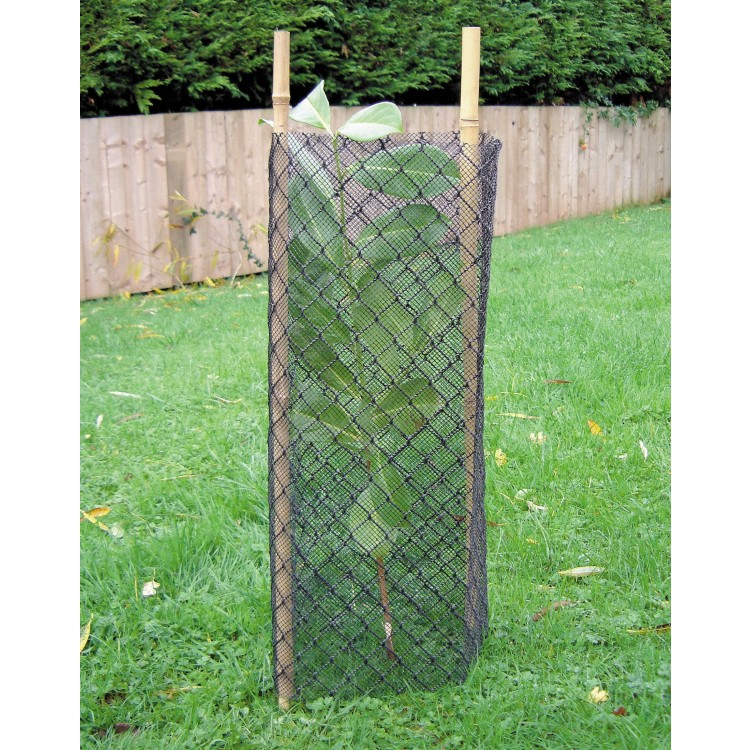 The Diamond Fine Mesh Shrub Shelter