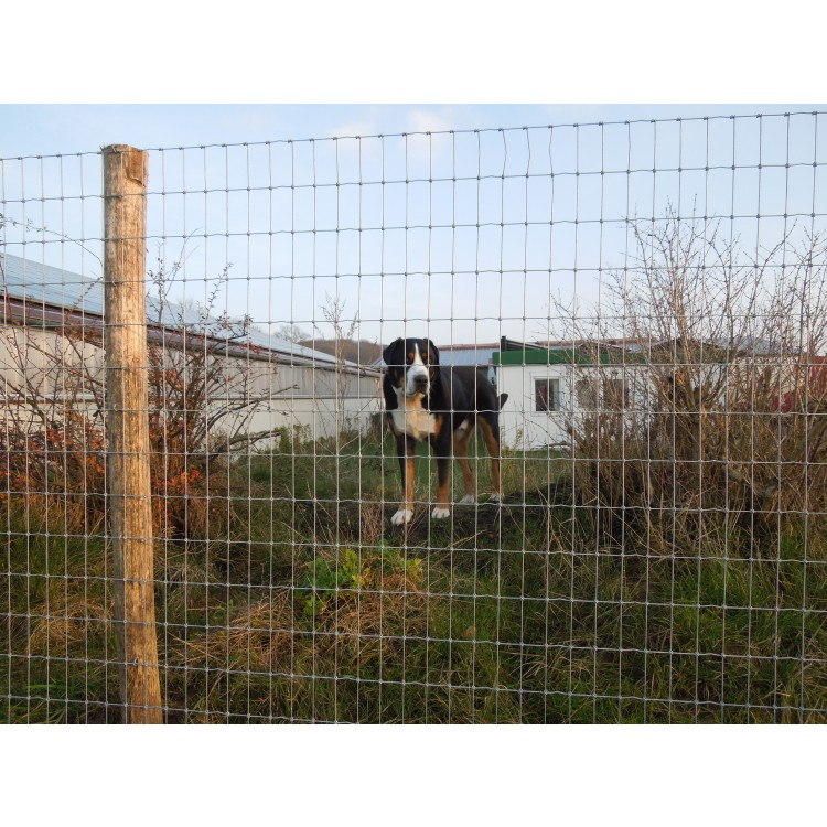 Tornado Force 12 - Dog Fencing - Prices on application due to volatility  in the market