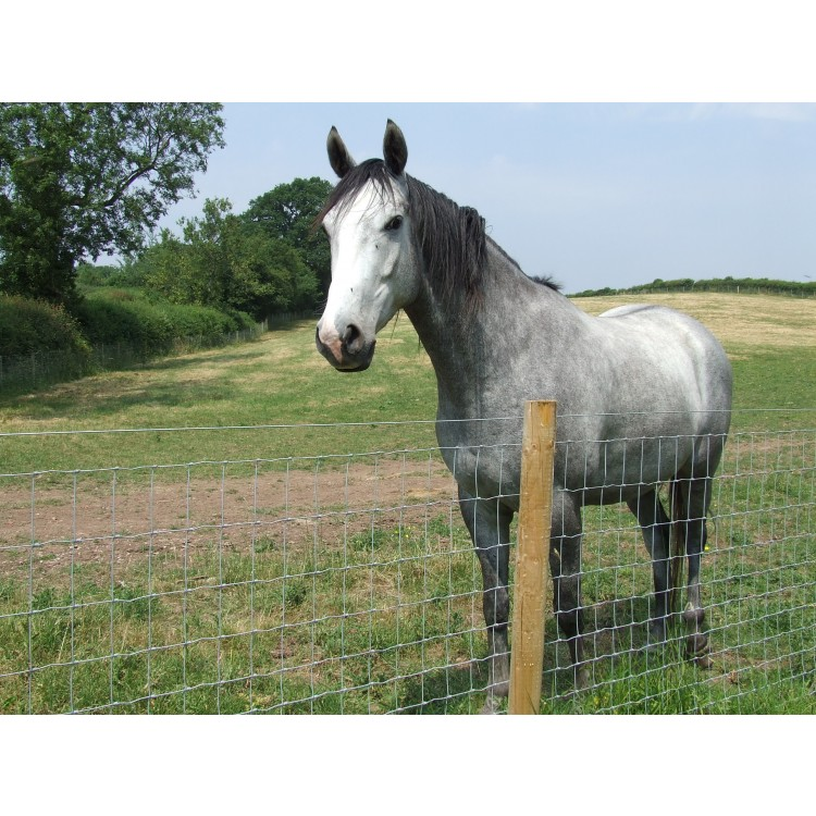 Tornado Force 12 - Horse Fencing - Prices on application due to volatility  in the market